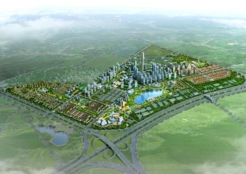 Dự án trồng cây đô thị splendora